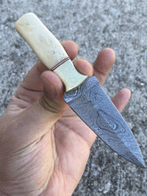 Load image into Gallery viewer, Custom Hand Damascus Steel Hunting Dagger Pocket Knife Brass Bolster& Bone Handle-AJ-60