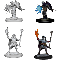D&D Nolzur's Marvelous Miniatures: Elf Male Wizard