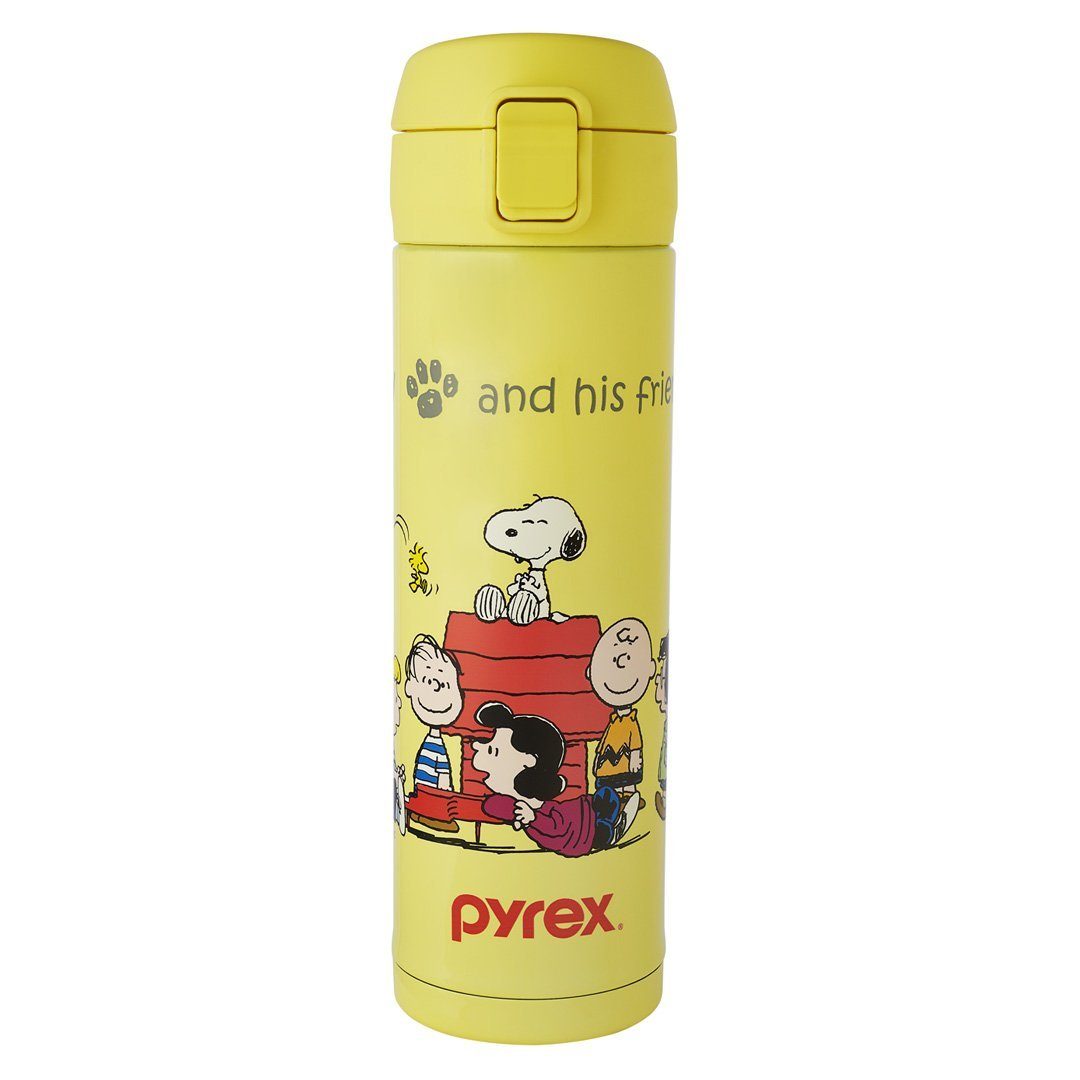 480ml Thermal Bottle