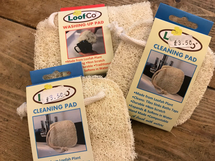 Loof Co. Cleaning Pad