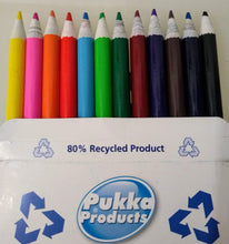 12 Recycled Colour Pencils