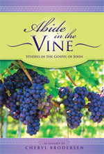 Abide in the Vine Workbook - Paperback