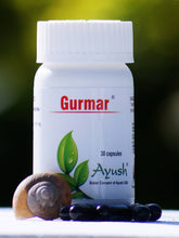 Load image into Gallery viewer, Ayush Herbs GURMAR (CAPSULE) – DIABETES SUPPORT