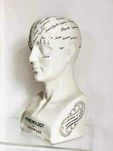 Large Antique effect Phrenology head