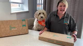 Inside your Nibble and Nosh Deluxe Dog Treat Box