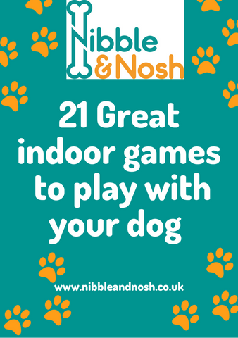 Nibble_and_Nosh_21_Great_Indoor_games_to_play_with_your_dog