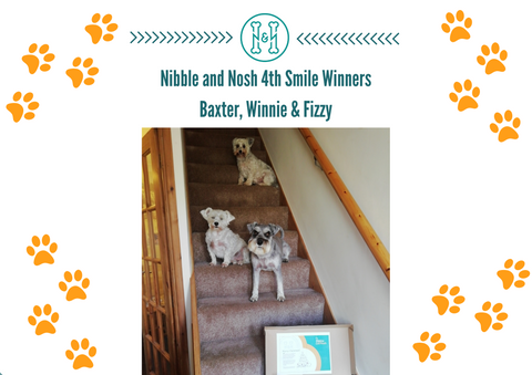 Nibble_and_nosh_smile_competition_winner_No4