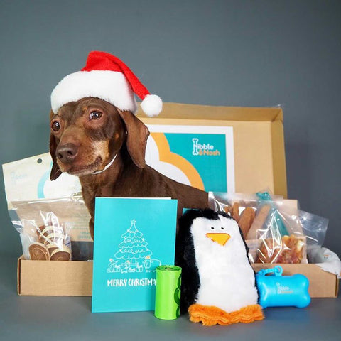 Christmas Luxury Gourmet Dog Treat Hamper - Gold Edition