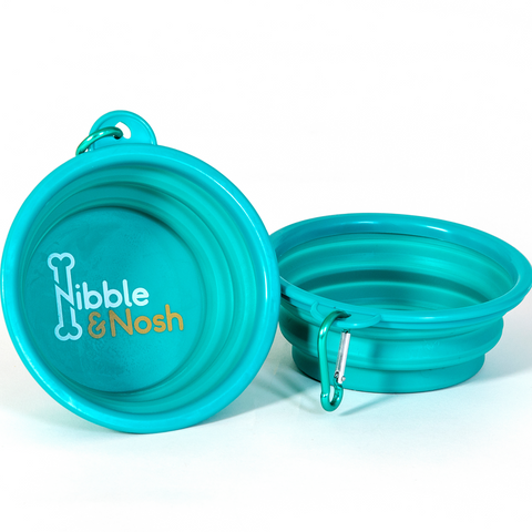 Nibble and Nosh Collapsible Water Bowl