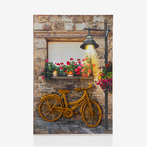 Golden Bicycle 3D Painting