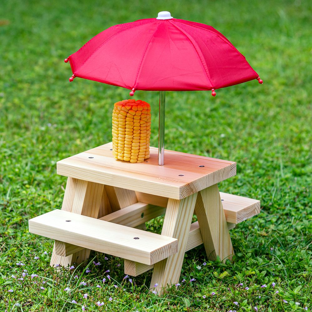 Squirrel Feeder Picnic Table with DIY set up Corn Cob Umbrella on Grass