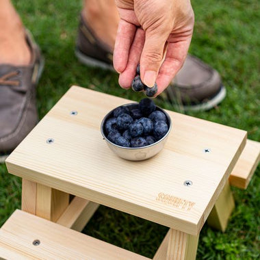 DIY Feeding Squirrels Fruits of your choice on Feeder Picnic Table