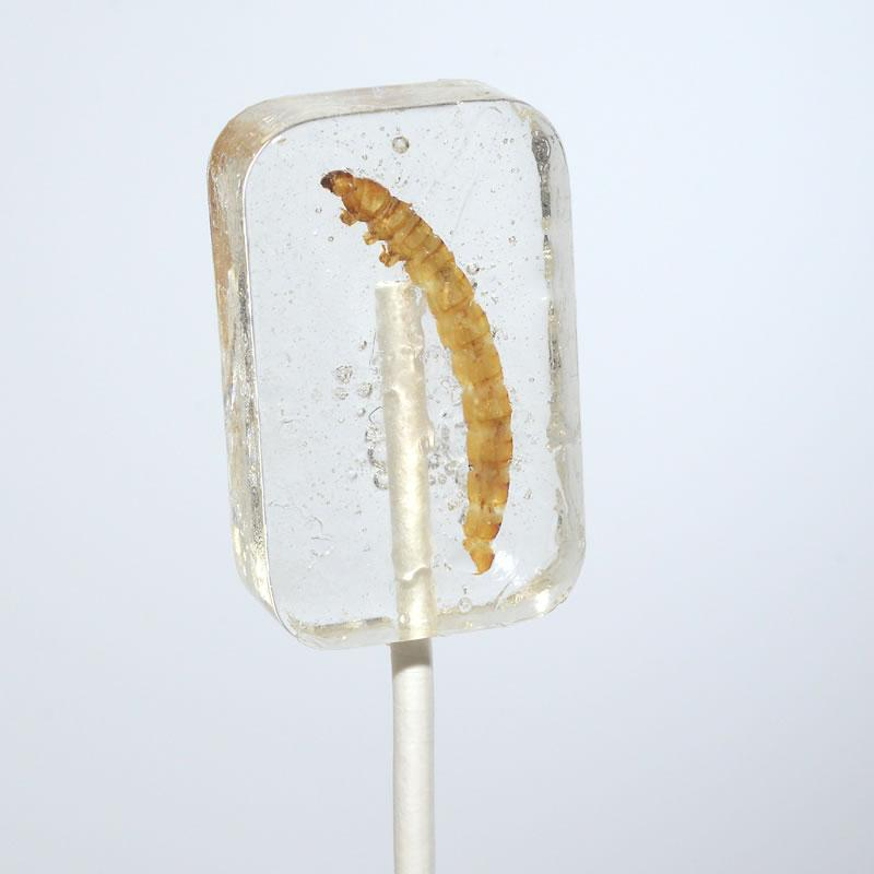 Tequila Worm Sucker Lollipop