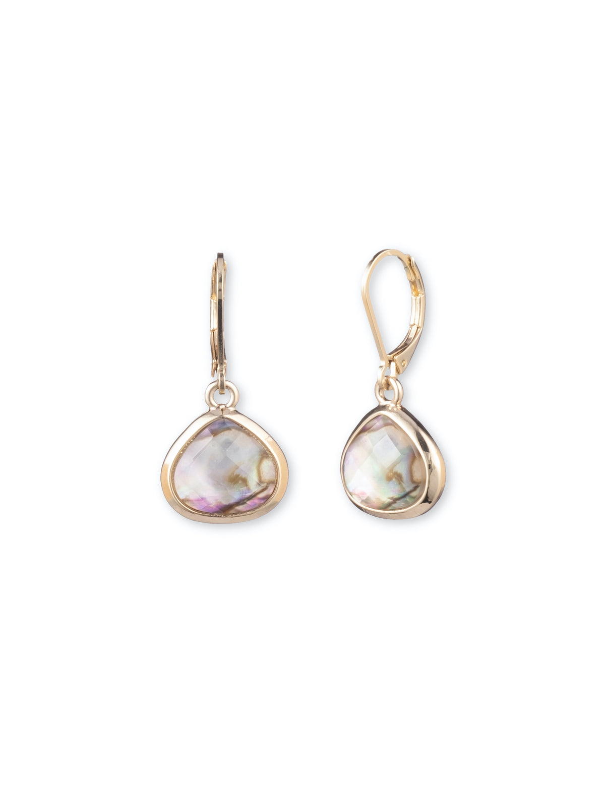 Abalone Stone Gold-Tone Earrings