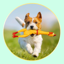 Load image into Gallery viewer, Chick-A-Dog Toy