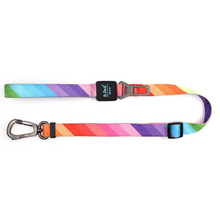 Load image into Gallery viewer, Rainbow Leash