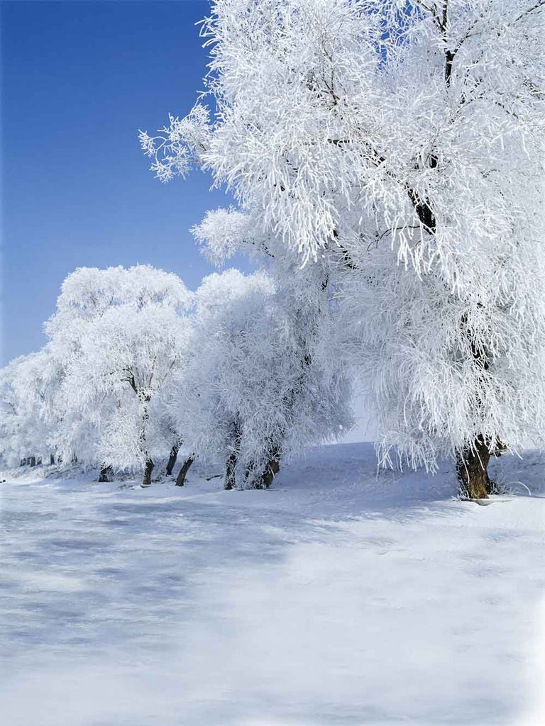 Festival Backdrops Winter Backdrops Snowy Background CM-S-1830-E