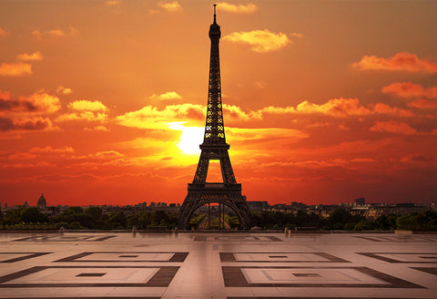 Eiffel Tower Beautiful Sunset Paris City Backdrop for Photography D123