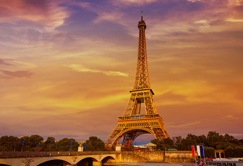 Paris Eiffel Tower Sunset View Backdrop for Photo Studio D126