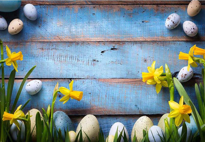 Easter Eggs Yellow Flowers Blue Wood Wall Backdrop for Photos F-2379