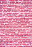 Pink Brick Wall Photo Backdrop for Party Decorations F-375