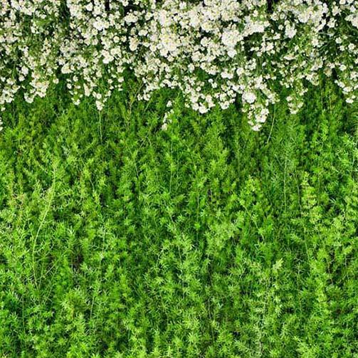 Green Leaves Flower Wall Photography Backdrop G-186