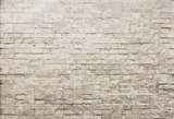 Vintage Brick Wall Seamless Photography Backdrops for Studio G-32