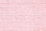 Pink Brick Wall Photography  Backdrop  G-41