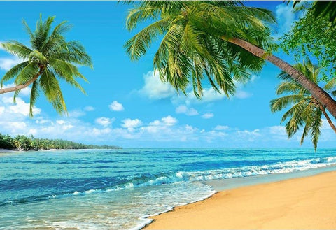 Summer Sea Beach  Blue Sky Photo Backdrop G-502
