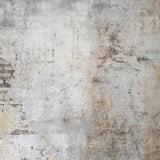 Grunge Old Brick Wall Photo Backdrops G-559