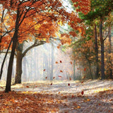 Autumn Fall Yellow Leaves Photo Backdrop G-593