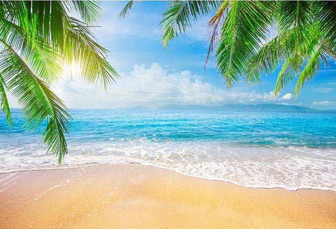 Seaside Sea  Sandy Beach  Summer Holiday Backdrop G-698