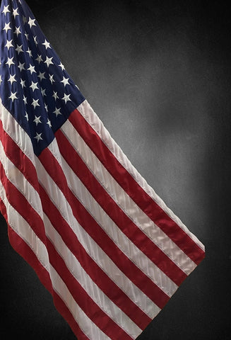 USA Flag Independence Day Patriotic Photo Backdrop GA-22
