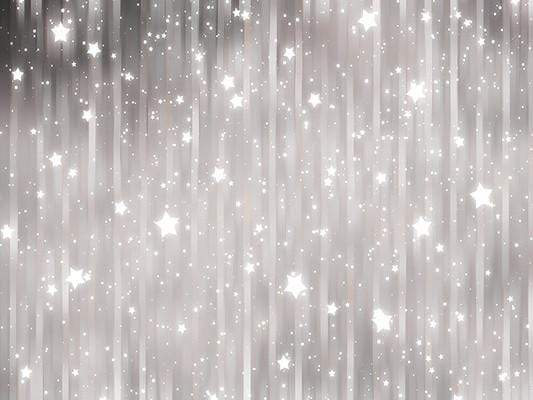 Shiny Grey Stars Glitter Photo Studio Backdrop GC-105