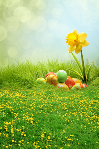 Easter Decorations Backdorps Eggs Green Grass  GE-058