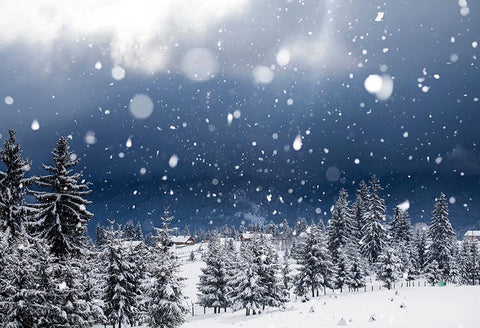 Winter Snow Scenery Forest Photo Backdrop GX-1042