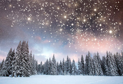 Shining Stars Winter Christmas Trees Backdrop for Photography GX-1080