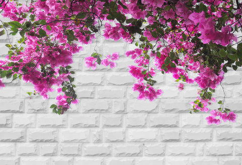 White Brick Wall Spring Flower Photo Backdrops HJ03177(1)