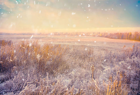 Season Backdrops Winter Backdrops Snowy Backgrounds