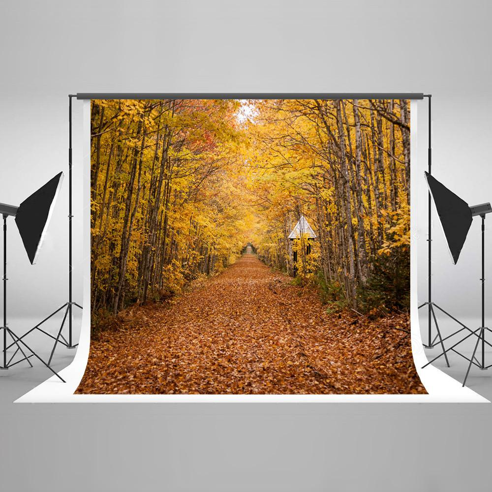 Autumn Yellow Leaves Forest Fall Backdrop for Studio HJ03451
