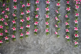 Grunge Brick Wall With Flower Backdrops for Photography HJ03614