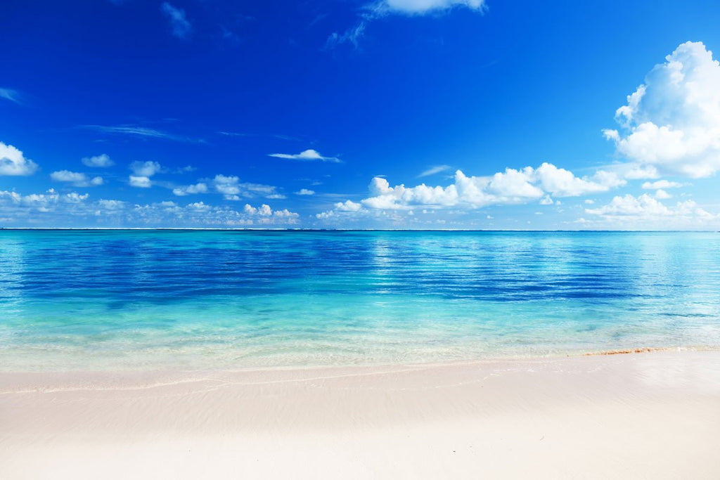 Beach Blue Ocean Sky Seaside Scenery Backdrop for Studio  HJ03893