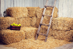 Western Barn Straw Farm Hay Photography Backdrop DBD-19355