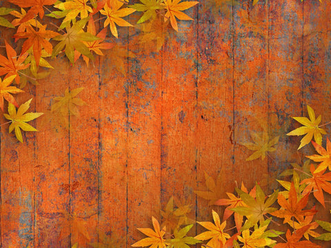 Red Marple Retro Wood Floor Autumn Photography Backdrop DBD-19359