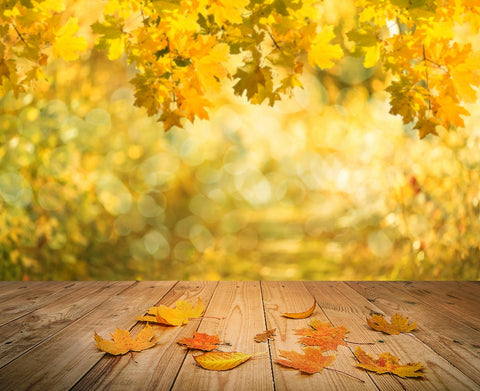 Autumn Photography Backdrop Bokeh Yellow Leaves Wood Floor Background DBD-19366