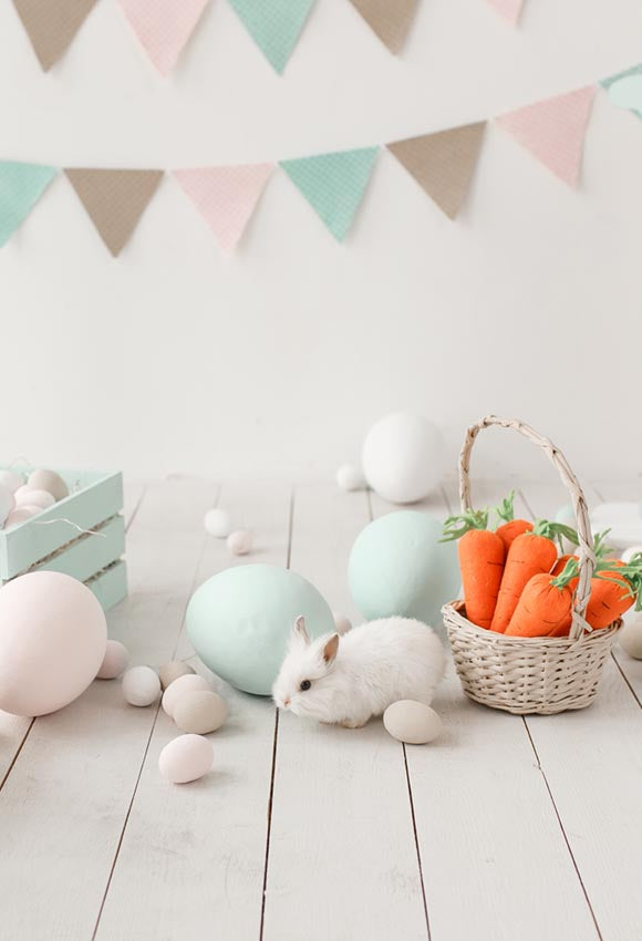 Easter Eggs Bunny Carrot Backdrop for Photo Shoot J02923