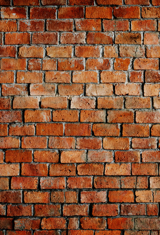 Retro Brick Wall Backdrops for Children Photo J03741