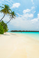 Season Backdrops Summer Backdrops Beach and Sand Backdrops J04536
