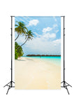 Beach Blue Ocean Seaside Summer Photo Backdrops J04536