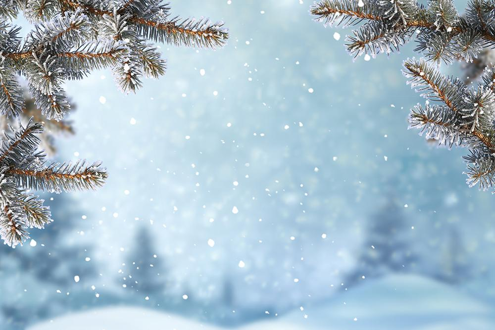 Little Snowflakes Falling from the Christmas Tree Background IBD-19307Snowflakes Blue Wall Christmas Backdrops for Photography DBD-19248